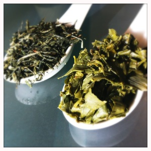 sencha green tea leaves dry and steeped