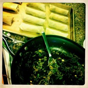 prepped tea mushroom egg rolls